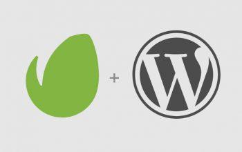 How to Update Zozothemes WordPress themes with the Envato Market WordPress Plugin?