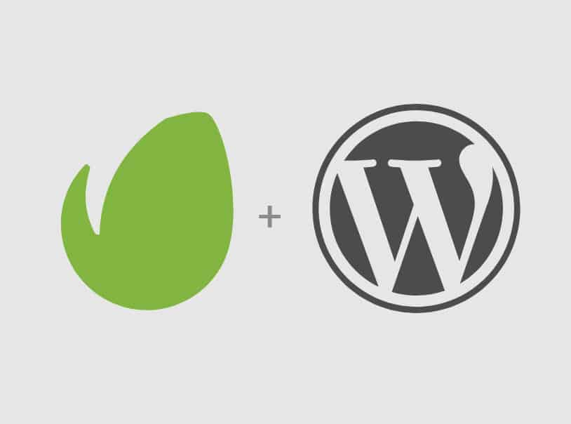 WordPress themes with the Envato Market WordPress Plugin