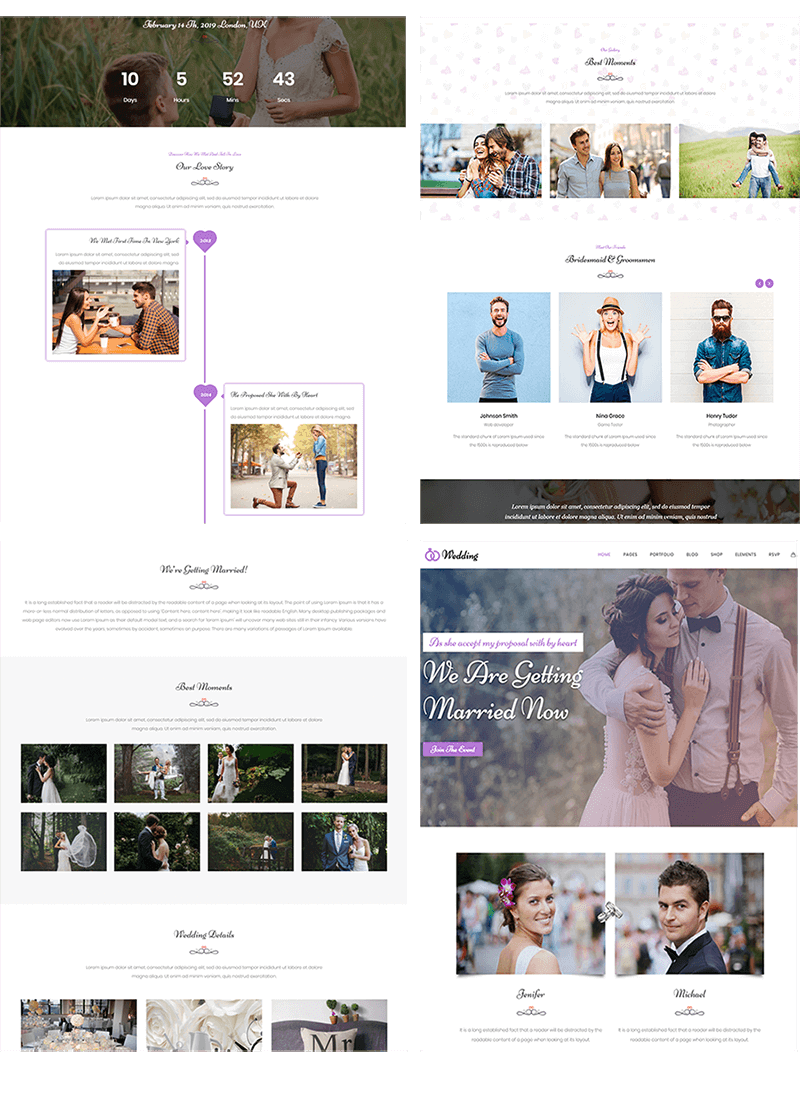 Multiple demos for Wedding Planner WordPress Theme